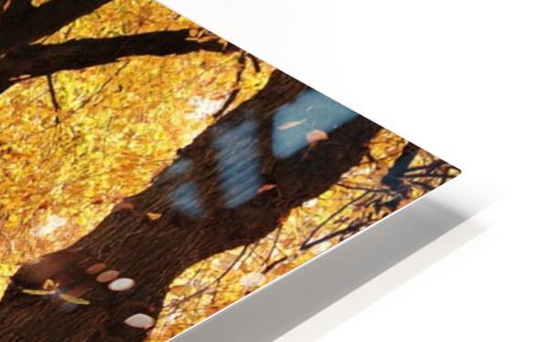 JPT 5921W HD Sublimation Metal print