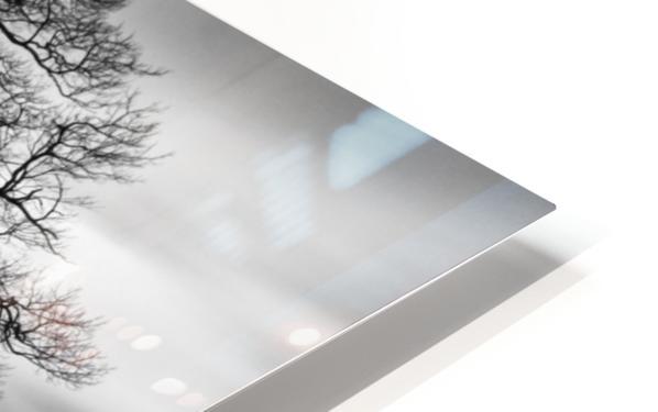 Dark Tree HD Sublimation Metal print