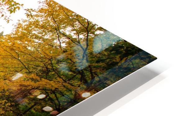 Egypt Falls HD Sublimation Metal print