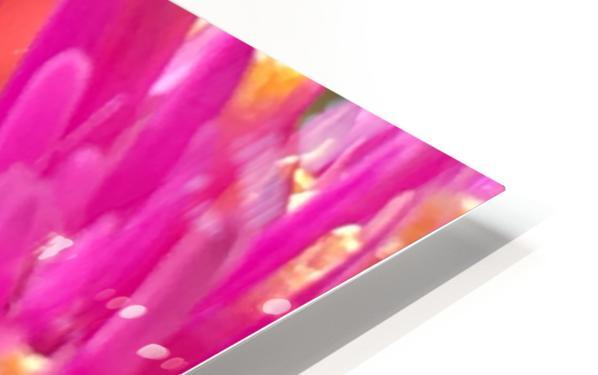 5 th Resonance HD Sublimation Metal print