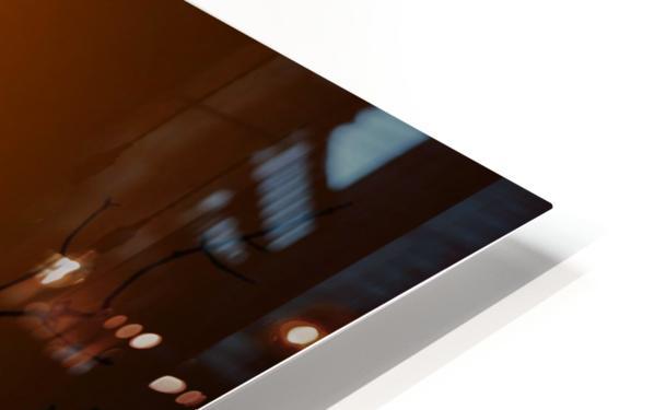 Egret Eclipse HD Sublimation Metal print