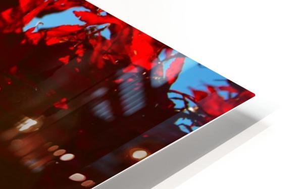 Chinese Maple Impression de sublimation métal HD