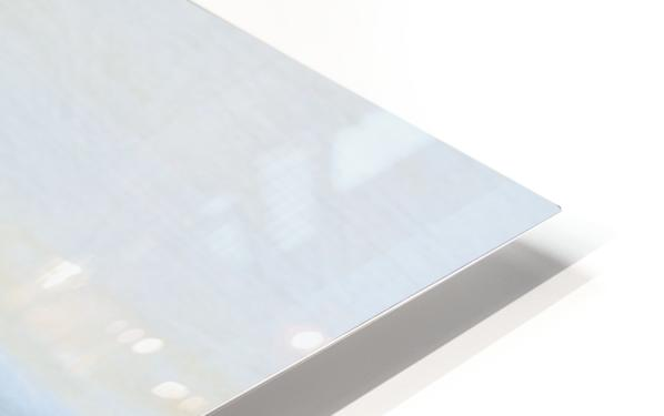 DD2FADA5 2435 4E3B 9E4D A280EA452E9F HD Sublimation Metal print