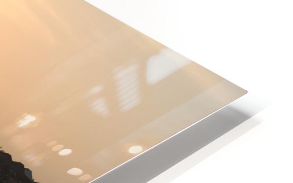 Asian Fishin HD Sublimation Metal print