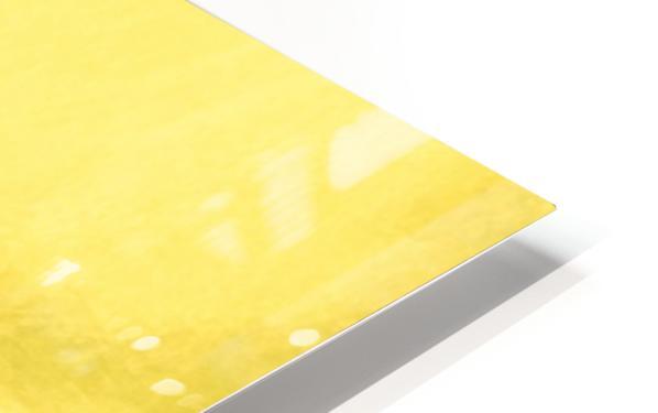 C4C2BC48 DFDA 4FB0 8B48 156F0F5FC70B HD Sublimation Metal print