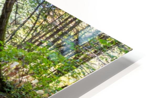 Eagle Cliff Falls 19 HD Sublimation Metal print