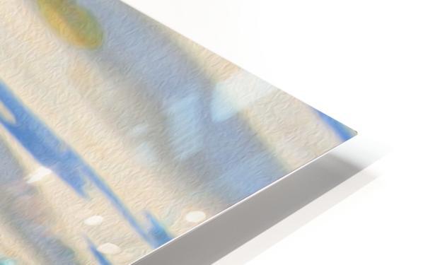 Canard Colvert HD Sublimation Metal print