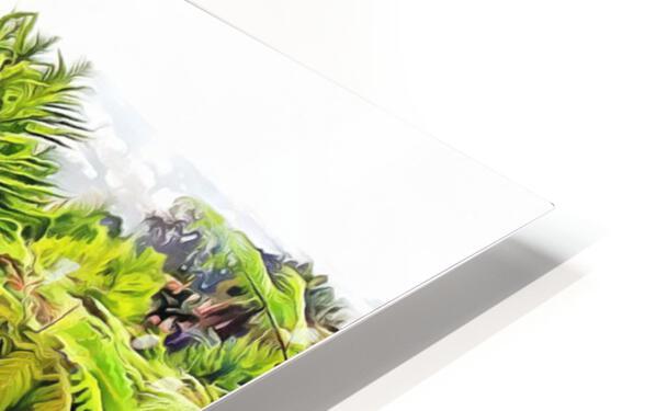 Oriental Gardens Madeira 4 HD Sublimation Metal print
