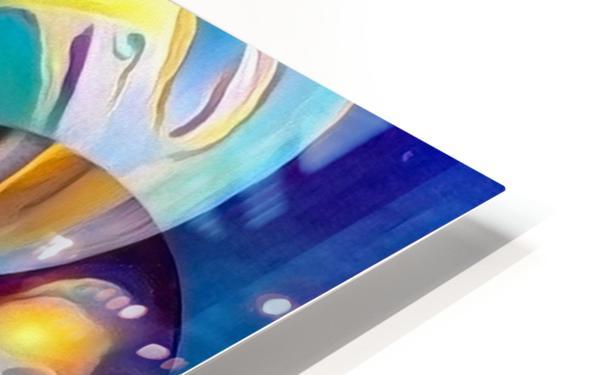 Vivid Illusion HD Sublimation Metal print