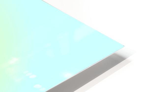 op basket 5.27b1H 18 HD Sublimation Metal print