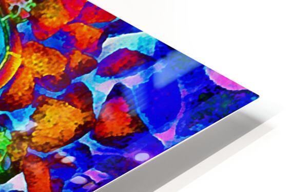 Rainbow Turtle HD Sublimation Metal print