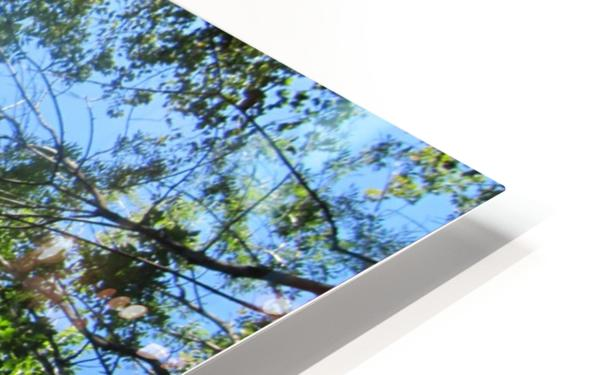 Landscape (200) HD Sublimation Metal print