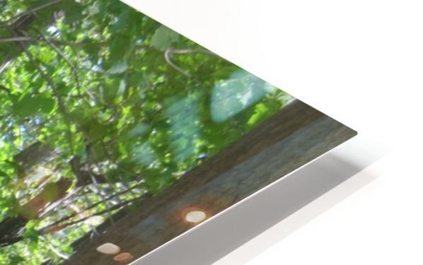 Landscape (267) HD Sublimation Metal print