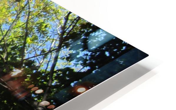 Landscape (181) HD Sublimation Metal print