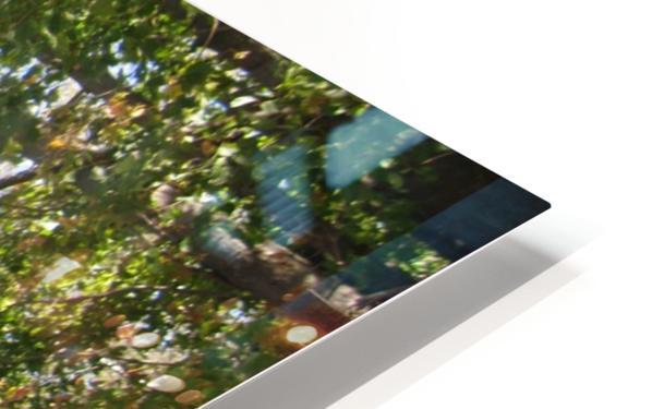 Landscape (302) HD Sublimation Metal print