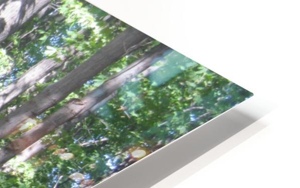 Landscape (87) HD Sublimation Metal print