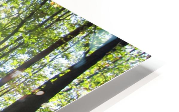 Landscape (37) HD Sublimation Metal print