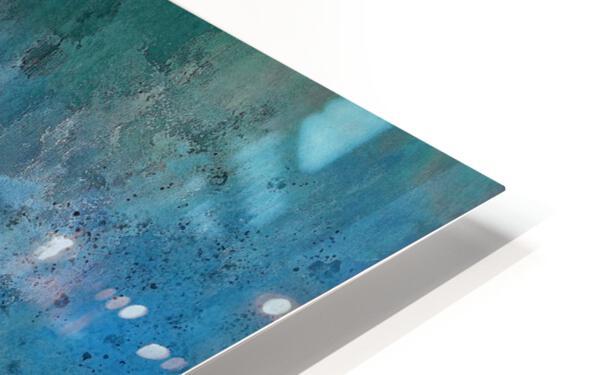 Hyacinth Macaw HD Sublimation Metal print
