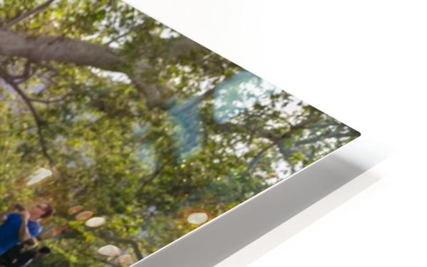 IMG_1445 HD Sublimation Metal print