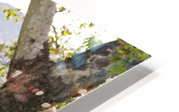 IMG_1434 HD Sublimation Metal print