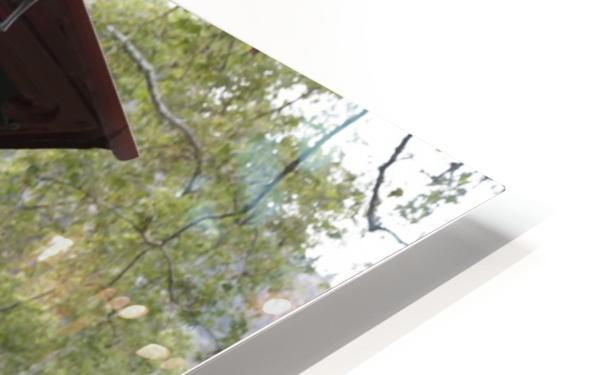 IMG_1457 HD Sublimation Metal print