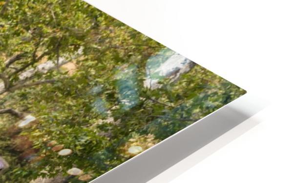 IMG_1561 HD Sublimation Metal print