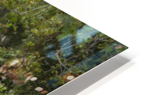IMG_1703 HD Sublimation Metal print