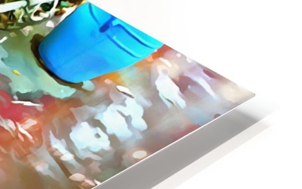 Turtle Pot At Majorelle Gardens HD Sublimation Metal print