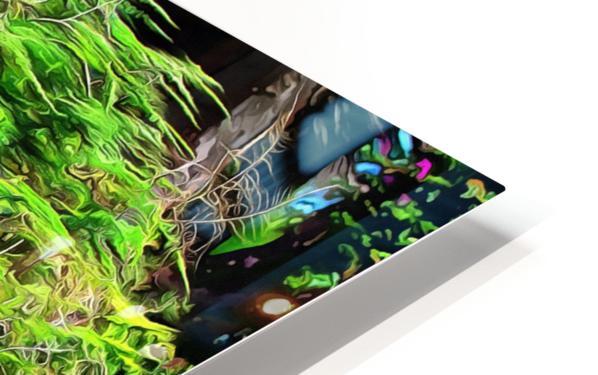 Colorful Plant Pots Marrakech 4 HD Sublimation Metal print