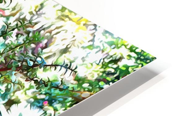 Colorful Plant Pots Marrakesh 10 HD Sublimation Metal print