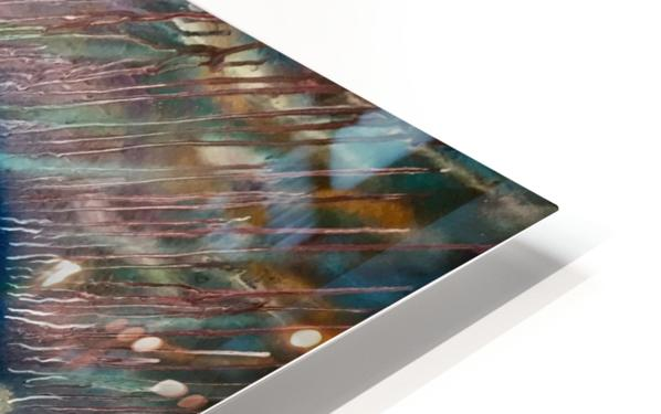 IMG_4052 HD Sublimation Metal print