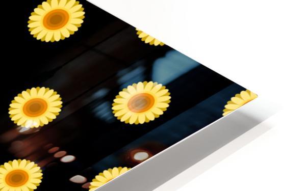 Sunflower (30)_1559875865.0546 HD Sublimation Metal print