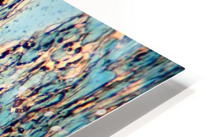 Waterways HD Sublimation Metal print