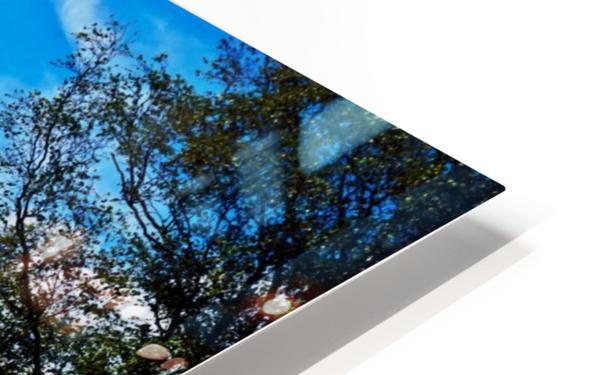 Dunes Landscape 03 HD Sublimation Metal print