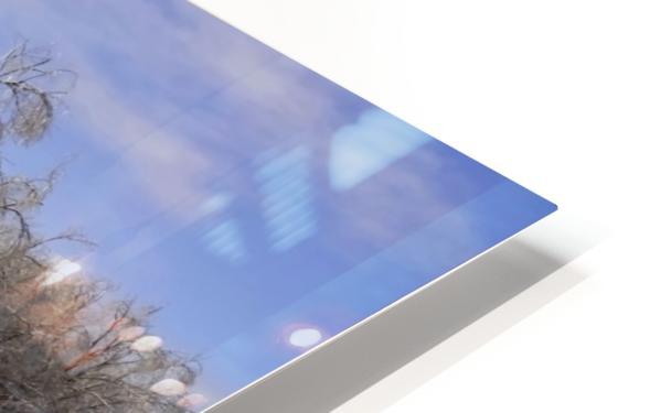 Matin glacé- Iced morning HD Sublimation Metal print
