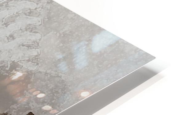 Venise le gondolier HD Sublimation Metal print
