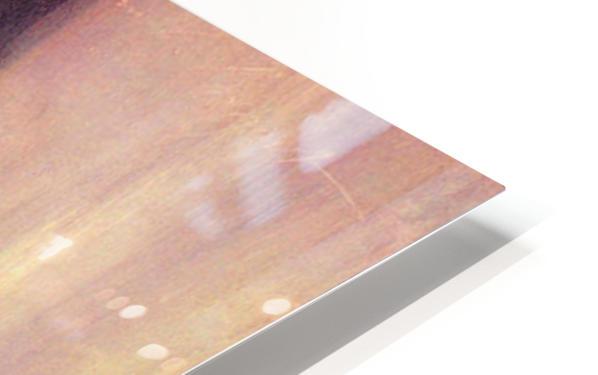 Portrait of Vernon Lee by John Singer Sargent HD Sublimation Metal print