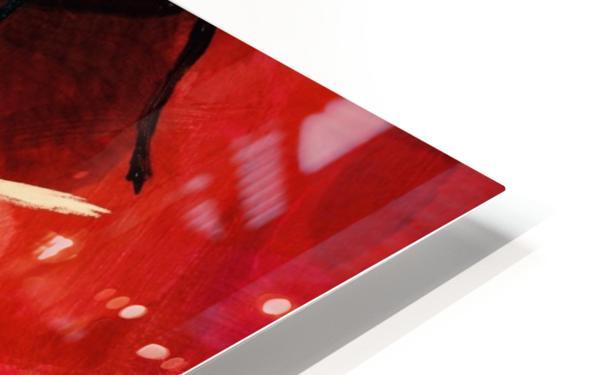 ED1BE059 C5B9 4F55 9F00 328857720FBF HD Sublimation Metal print