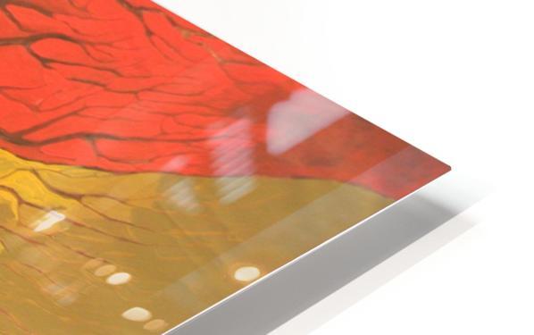 10 HD Sublimation Metal print