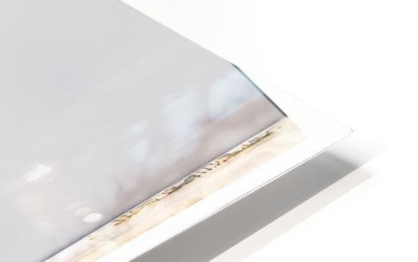 Tall Grass HD Sublimation Metal print