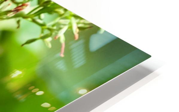Slim Pickings HD Sublimation Metal print