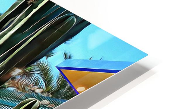 Giant Cacti Jardin Majorelle Marrakech HD Sublimation Metal print