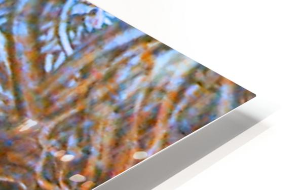 20190703_202827_1562466061.0594 HD Sublimation Metal print