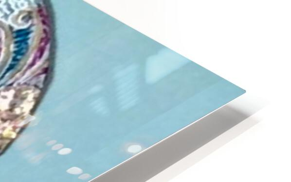 Delphinus  HD Sublimation Metal print