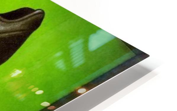 Soccer  HD Sublimation Metal print