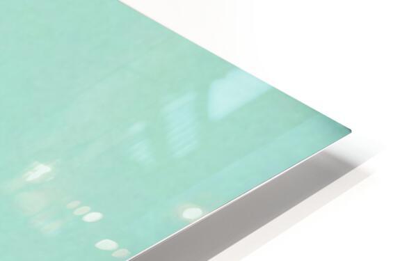 Azure Kingfisher  HD Sublimation Metal print