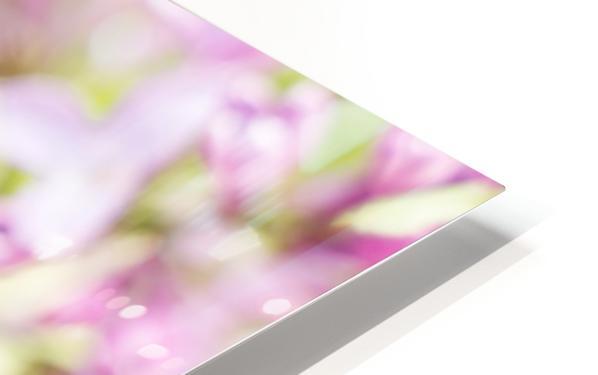 Lilacs HD Sublimation Metal print