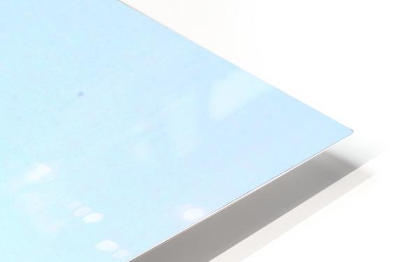 blue moon keys HD Sublimation Metal print