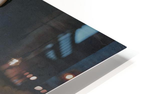 Ann Tyng HD Sublimation Metal print