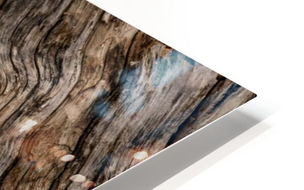 Banff Petrified Wood HD Sublimation Metal print